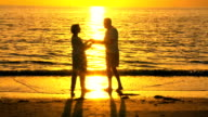 Romantic Senior Couple at Sunset video