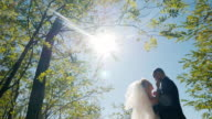 Romantic wedding couple bathing in the sunlight. They look at each other video