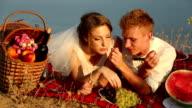 Romantic Wedding picnic video