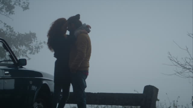 Romantic young couple hugging by the lake video