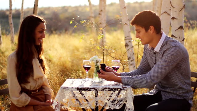 Romatic Picnic Couple Marriage Proposal Kiss video