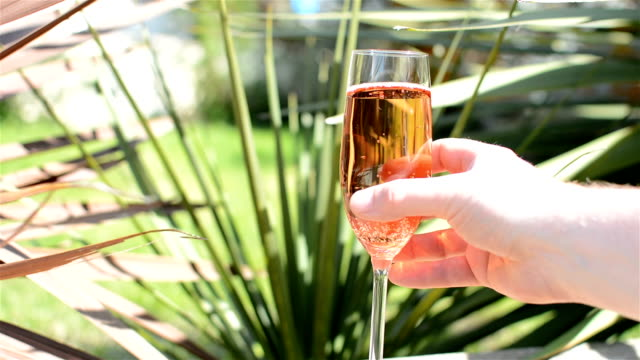 Rosé Wine in Garden video