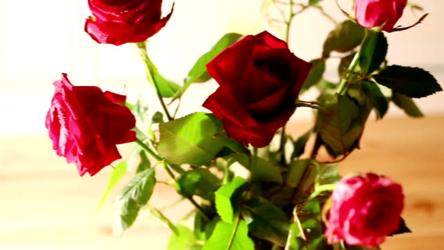 Rose bouquet dolly shot video