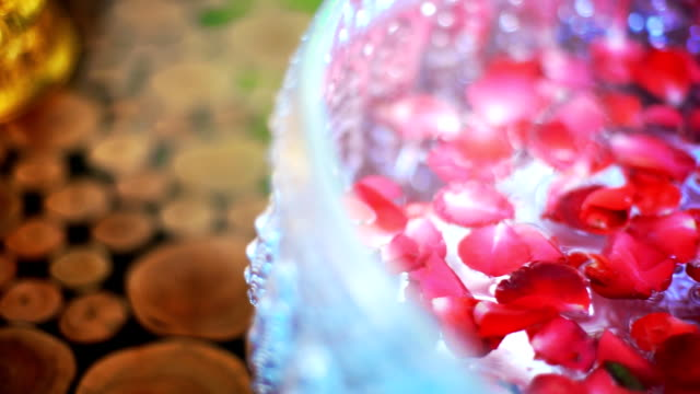 Rose Petals Floating on Water video