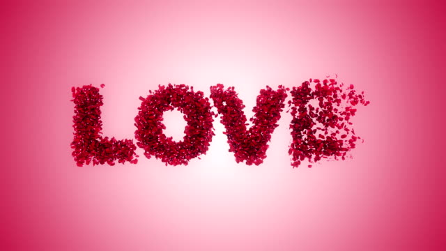 Rose petals flying from Love pink background video