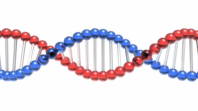 Rotating DNA molecule video