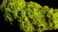 Rotating macro product shot of high quality marijuana, on a solid black background video