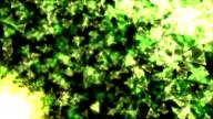 Rotating Pyramids - Loop video