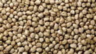 Rotating raw chickpea beans, vegan healthy nutrition video