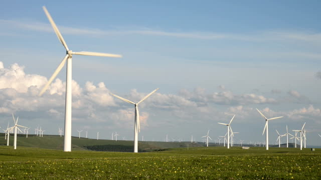 Rotating wind turbine and meadow under blue sky,real time. video