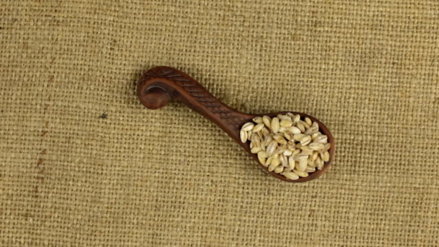 Rotation of a clay spoon with pearl barley grain, background for design. video
