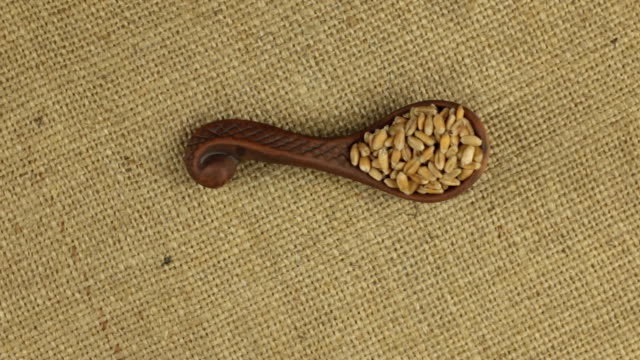 Rotation of a clay spoon with wheat grain, background texture for design. video