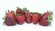 Rotting Strawberries video
