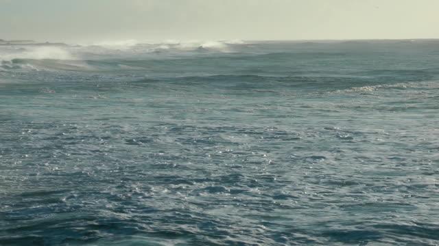 rough seas video