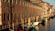 Row Boats In Venice Canal video