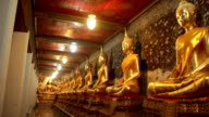 Row of Buddhist statues video