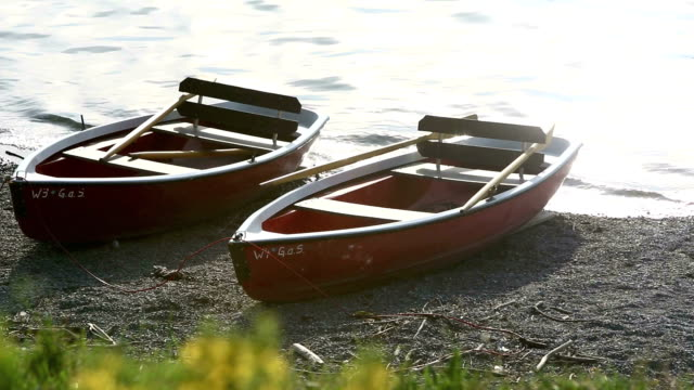 Rowing boats on the shore in evening sun video