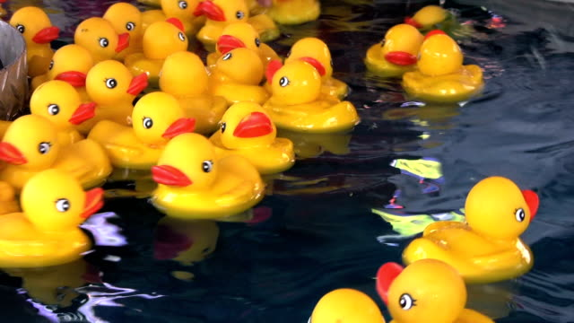 Rubber Duckies Floating In Circles (HD 1080p30) video