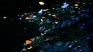 Rubbish in the sea video