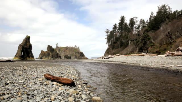Ruby Beach video