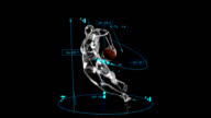 3D Rugby Player with technical data video