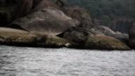 Rugged and Mountainous Coastline video