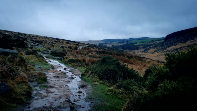 Rugged Path On Windy Moorland video