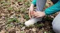 Runner Tying Shoelace In the Nature video