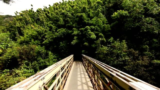 Running Across Bridge POV (HD) video