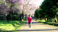 woman running along cherry blossom at park in the morning, Dolly Shot video