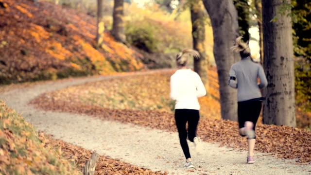 Running at park in autumn video