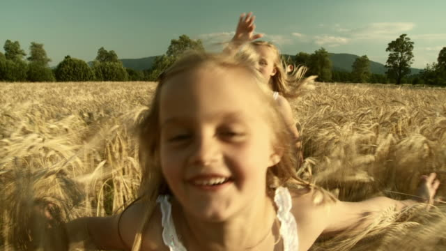 HD SLOW-MOTION: Running In Wheat video