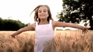 HD SUPER SLOW-MOTION: Running In Wheat video