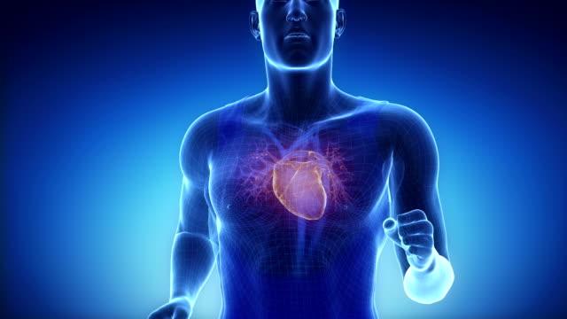 Running man heart scan in slow motion video