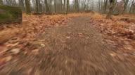 Running through the woods video