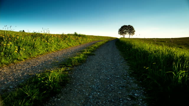 CRANE UP: Rural Landscape video