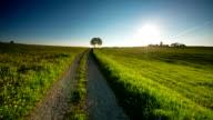 CRANE DOWN: Rural Landscape video