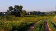 rural landscape video