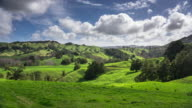 Rural Rolling Landscape in Northern New Zealand - Time Lapse video