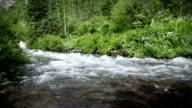 Rushing Spring Fishing Hiking Creek Rocky Mountains LOOP video