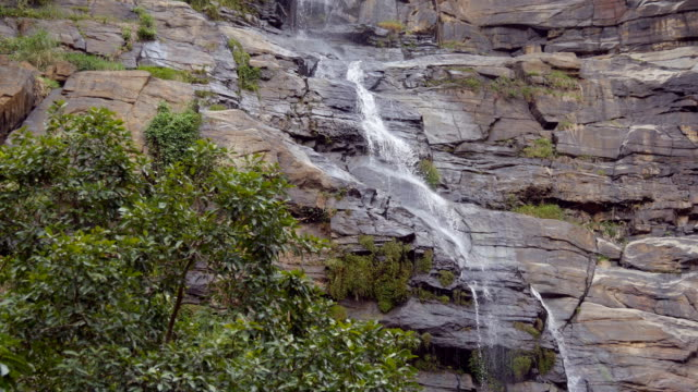 Rushing waterfall in the mountains with tropical forest. Beautiful nature background. Close up video