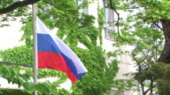 HD, NTSC: Russian flag (video) video