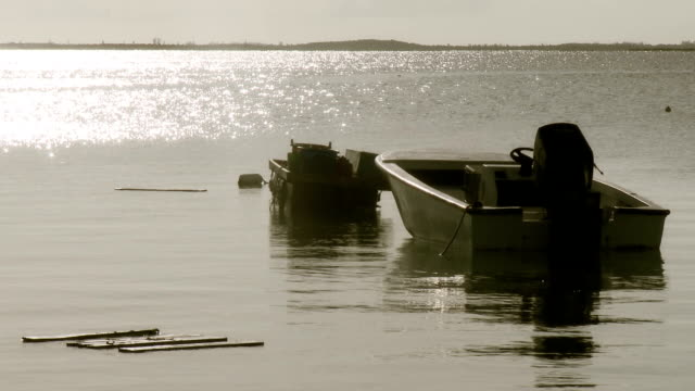 Rustic Wooden Boat video