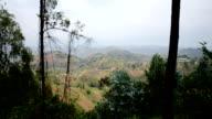 Rwanda countryside wide video