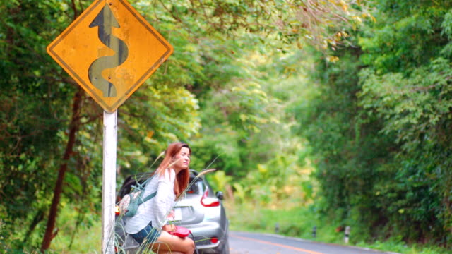 Sad pretty girl sitting on the road with dog video