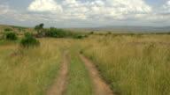 AERIAL: Safari in Kenyan Maasai Mara video