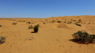 Sahara Desert nearby the Grand Erg Oriental , Tunisia video