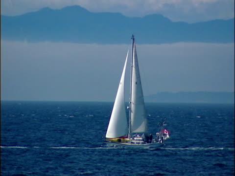 Sailboat in British Columbia video