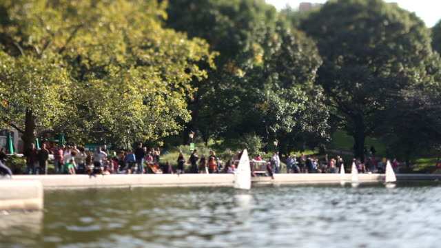Sailboats in Central Park (Tilt Shift Lens) video