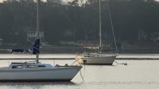 Sailboats Lay in Waiting video
